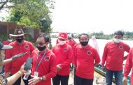 DPC PDIP Kabupaten Katingan Lakukan Penghijauan di Kota Kasongan