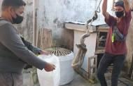 Ular Sanca Mangsa Ternak Warga di Jalan Manjuhan